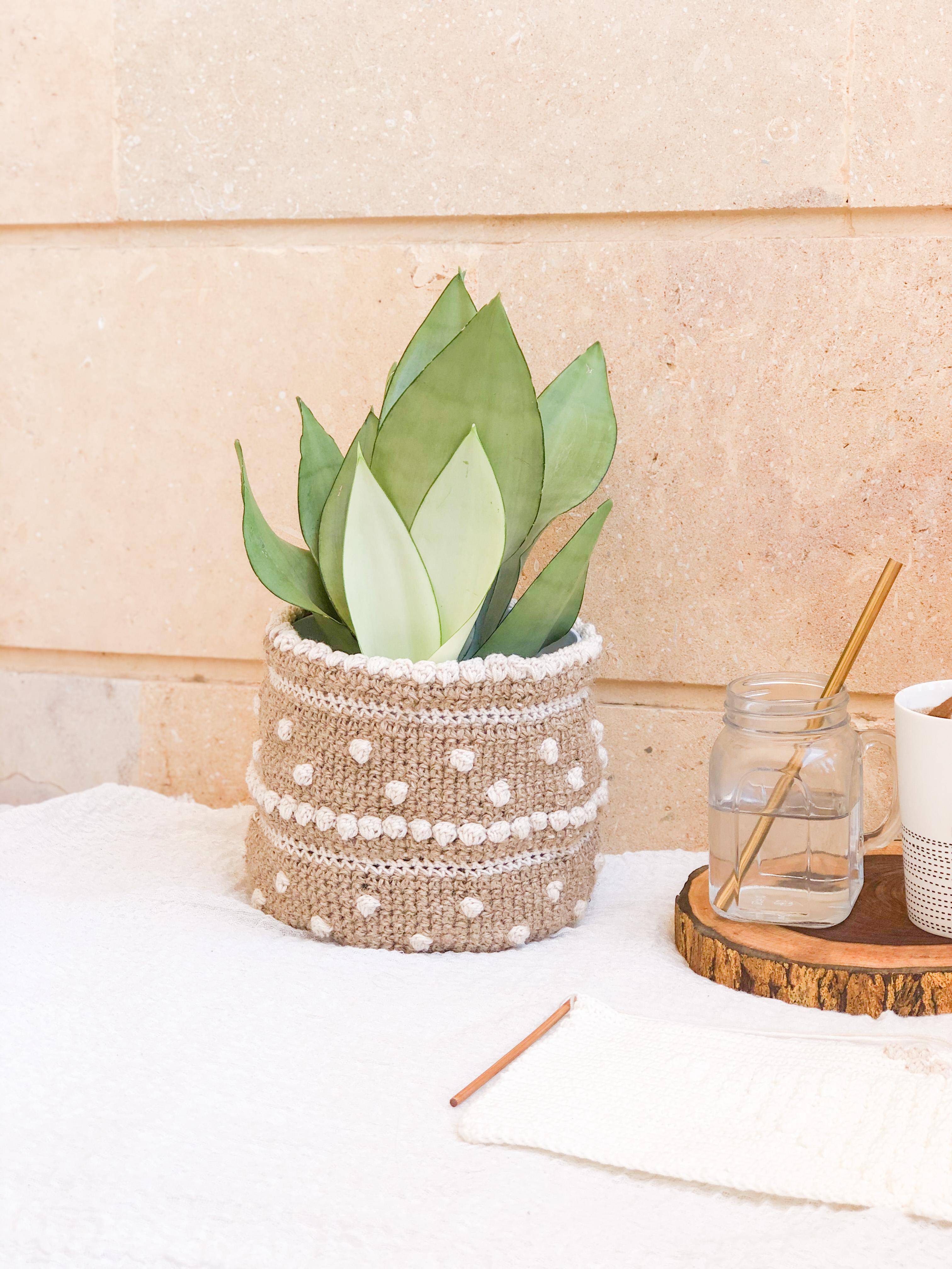 plant pot topknotch